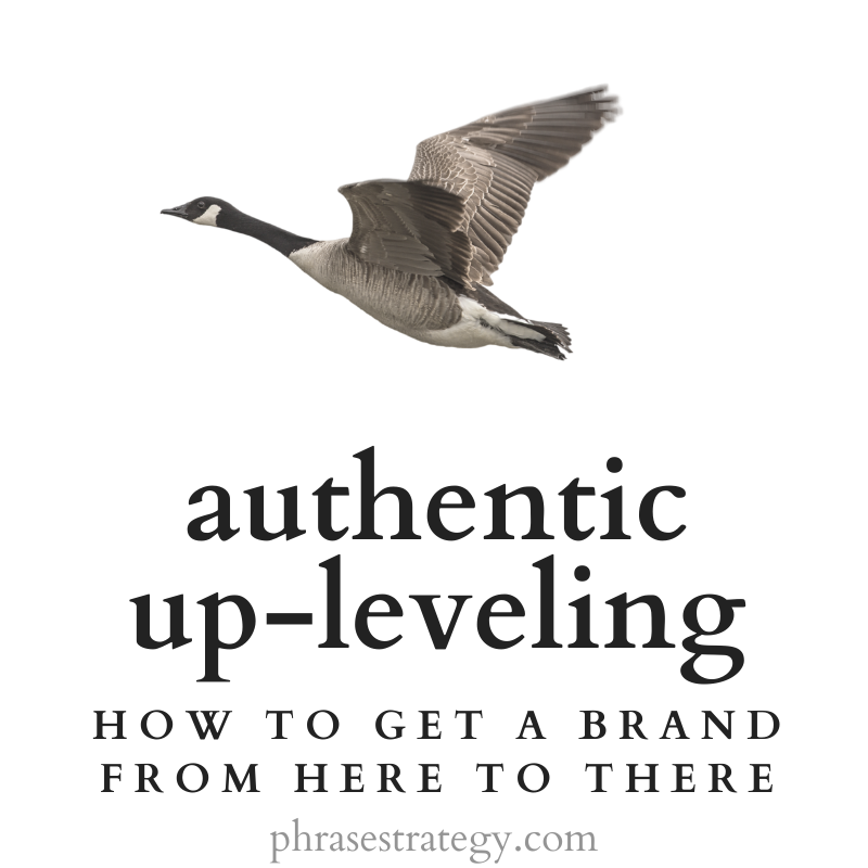Leveling-up authentically: get a brand from here to there